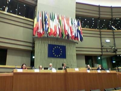 Ympäristövaliokunnan puheenjohtaja Florenz johti äänestyksiä