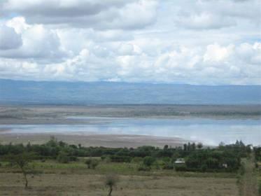 Maisemakuvaa savannilta.